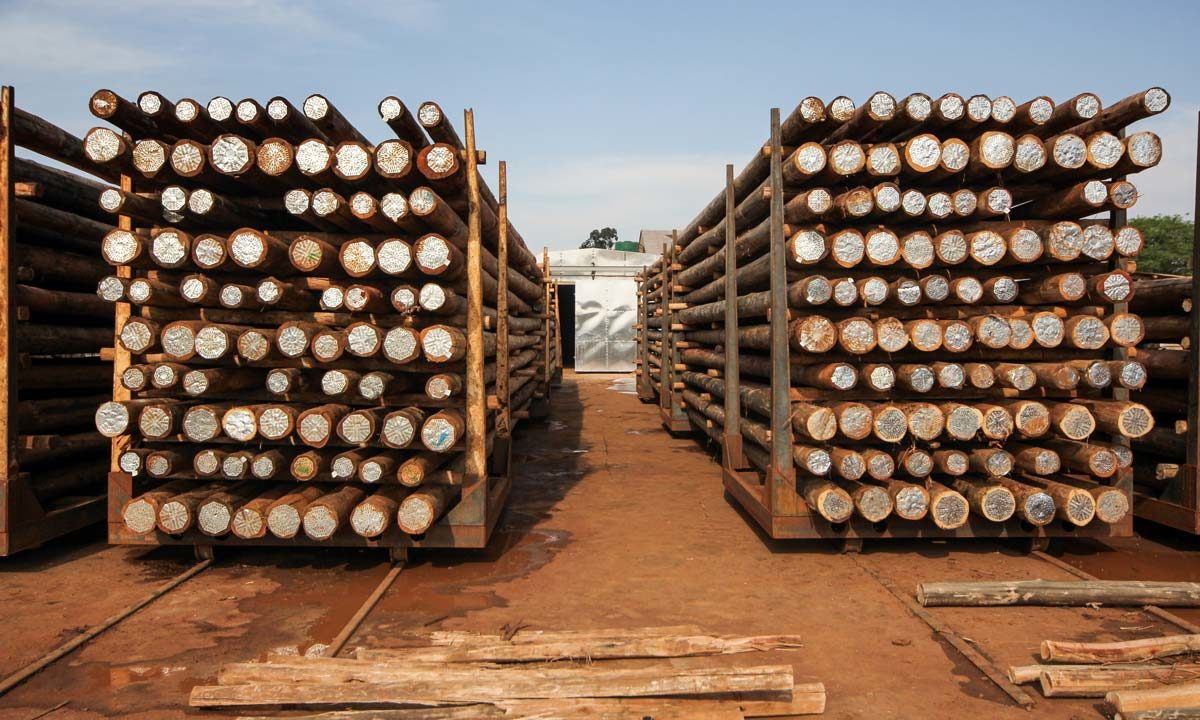Vuka Timbers - Our Process with neatly Stacked Timbers