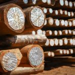 5 uses of wooden poles suggested by timber suppliers