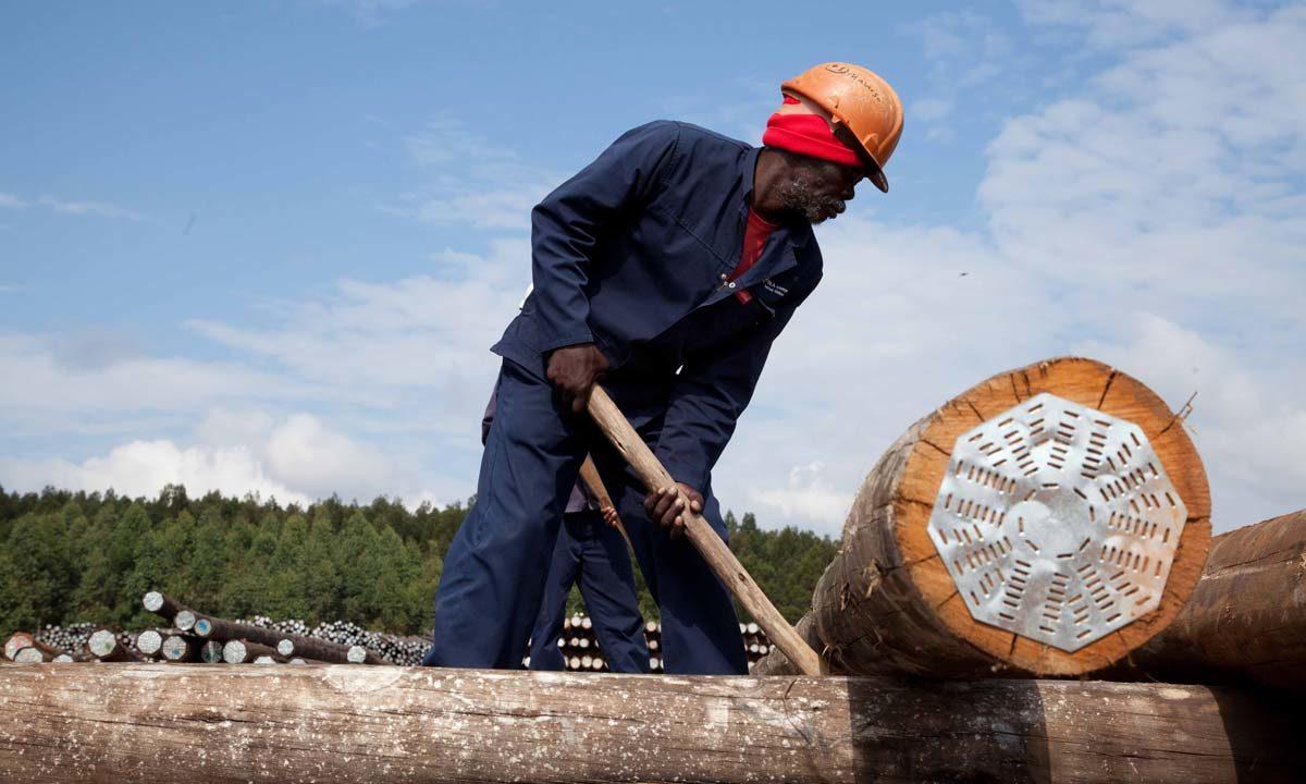 Vuka Timbers