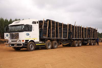 Vuka Timbers - Treated Wooden Poles Truck
